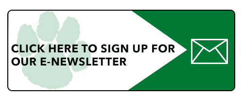 Form to sign up for e-newsletter